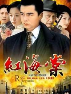 红海棠(全27集)