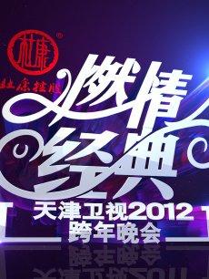 2012天津卫视跨年晚会
