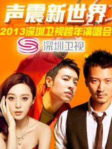 2013深圳卫视跨年演唱会(声震新世界)