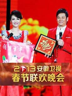 2013安徽卫视春晚