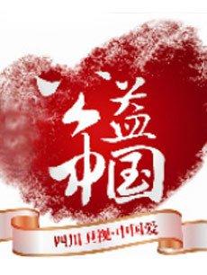 公益中国 2013年