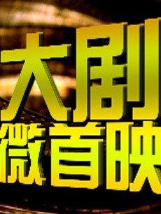 安徽卫视大剧微首映 2013年