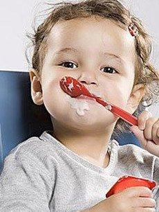 宝宝的食品配方
