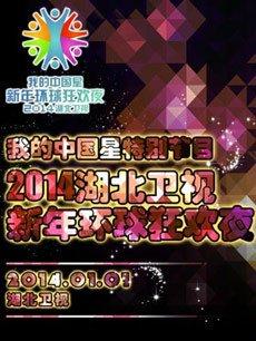 2014湖北卫视跨年(新年环球狂欢夜) 2014年