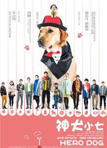 神犬小七湖南卫视版