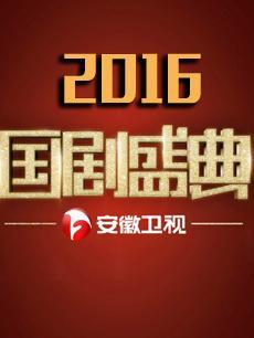 2016安徽卫视国剧盛典