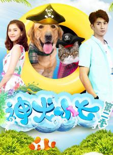 神犬小七2卫视版