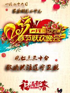 2017辽宁卫视