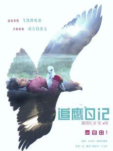 追鹰日记(普通话版)