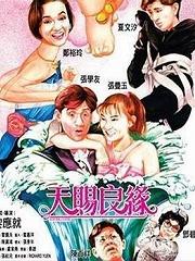 天赐良缘(2003)
