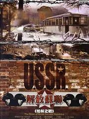 解放:柏林之战()
